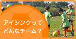 アイシンクってどんなチーム? 川口市 旧鳩ヶ谷市 サッカーチーム スクール 少年 小学生 幼児 ジュニア クラブ アイシンク
