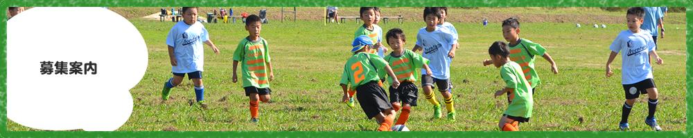 募集案内 川口市 サッカーチーム スクール 少年 小学生 子供 こども ジュニア グリーンカードリーグ アイシンク