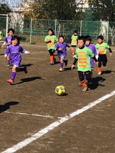 チャンピオンズリーグ川口鳩ヶ谷市小学生一二三四五六年幼児クラブチーム